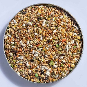Our Best Hand Crafted Mix of  Nuts, Fruits & Seeds Idel for Cockatiels, Quakers, Conures etc.